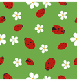 Seamless texture with ladybugs vector image vector image