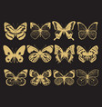 golden butterflies collection vector image