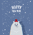 bear winter vector image