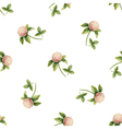 Clover flowers watercolor seamless pattern vector image vector image