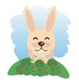 cute rabbit animal winking vector image