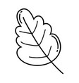 ecology leaf plant icon vector image