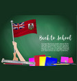 flag of bermuda on black chalkboard background vector image vector image