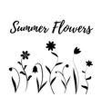 summer flowers in black and white vector image