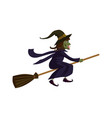 the witch on a broomstick holiday halloween vector image