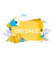 big sale announcement flat style design vector image