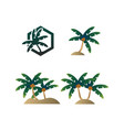 collection palm tree summer logo vector image