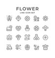 set line icons flower vector image vector image