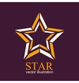 Star logo Star icon Abstract vector image vector image