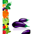 vegetables eggplant vector image vector image