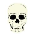 human skull cartoon vector image