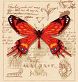 banner with drawing of a machaon butterfly vector image vector image