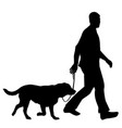 silhouettes of man and dog vector image