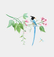 Watercolor birds paradise on branch with