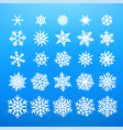 winter white snowflakes vector image