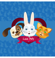 dog cat and rabbit label issolated over background vector image