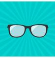 Glasses icon Sunburst background vector image vector image