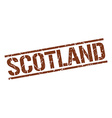 Scotland brown square stamp vector image vector image