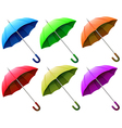 A group of umbrellas vector image vector image