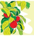cartoon apple tree in doodle style vector image vector image