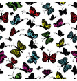cute multi colored butterfly on a white background vector image vector image