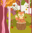 cute squirrel in trunk with leaves forest vector image vector image