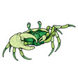 hand drawn line art colorful crab vector image