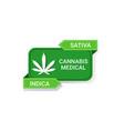 marijuana leaf sticker cbd oil label hemp ganja vector image