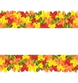 Banner with autumn maple leaves vector image vector image