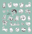 cute doodle cats with different emotions vector image