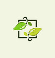 leaf frame abstract naturally logo vector image vector image