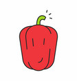 red pepper icon vector image vector image