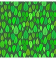 Summer Seamless Different Leaves Pattern vector image vector image
