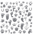 traces of animals vector image vector image