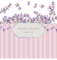 Vintage Lavender wreath card vector image vector image