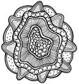 sea mandala flower with pearl in shell vector image