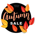 autumn sale composition vector image vector image