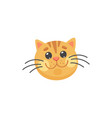 ginger cat emoticon isolated happy kitten head vector image vector image