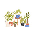 hygge composition hand drawn houseplant vector image vector image