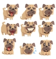 Little Pet Pug Dog Puppy With Collar Set Of Emoji vector image vector image