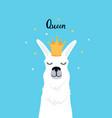 llama in a golden crown adorable alpaca queen vector image