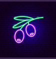 olive branch neon sign vector image