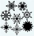 Set snowflake vector image vector image