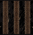 black marble and leopard fashion striped seamless vector image