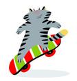 cute funny cartoon cat on skateboard feline vector image