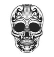 hand drawn human skull made floral shapes design vector image