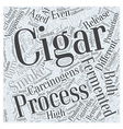 The Dangers of Being Exposed to Cigar Smoke Word vector image vector image