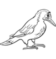yaffle bird animal coloring page vector image