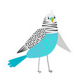 blue cartoon parrot vector image vector image