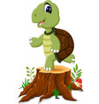 cartoon turtle posing on tree stump vector image vector image